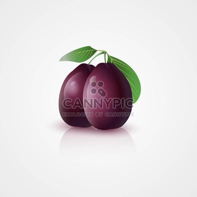 Vector illustration of purple plums with green leaves on white background - Free vector #125874