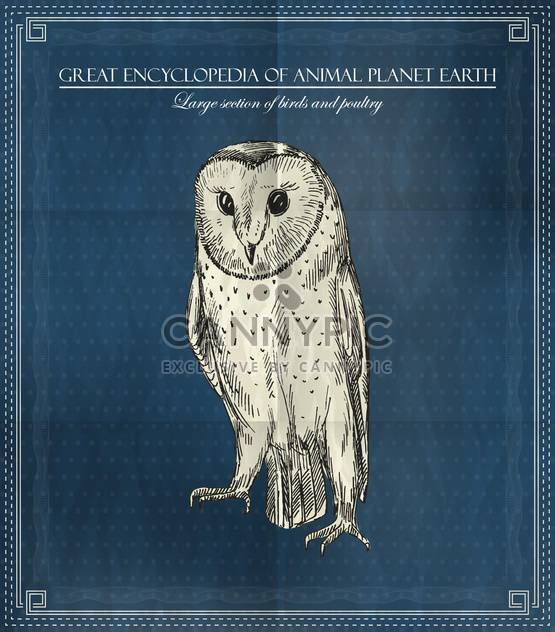 Vector owl from Great Encyclopedia of Animal Planet Earth - Free vector #135314