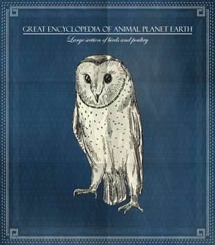 Vector owl from Great Encyclopedia of Animal Planet Earth - vector #135314 gratis